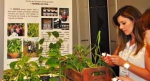 A farmacêutica e coordenadora do NASF confere as novidades sobre os fitoterápicos e a farmácia viva.