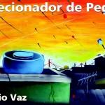 """""""Colecionador de pedras"""" (2007)- Sergio Vaz. Sérgio Vaz é poeta, e, como poeta, sabe ser simples. Como simples, sabe tecer o coletivo. Como coletivo, sabe ser nós. E como nós, faz-nos grandes ao seu lado.  'No meio de uma terra devastada pela canalhice plantada a tantos anos, alguém quer semear a poesia e certamente colherá incompreensão. Os pensamentos vadios do poeta se disseminam quando vê que subindo a ladeira mora a noite, e na margem do vento numa rua de terra ele lê a poesia dos deuses inferiores.  Se outros poetas pedem silêncio, ele pede mais barulho.  Se outros escritores pedem paz, ele quer guerra'. Sérgio Vaz (Ladainha/MG, 26 de junho de 1964).  Seus primeiros livros foram edições independentes. Só veio a ser publicado por uma editora em 2007, quando a Global lançou Colecionador de Pedras."""