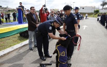 Cão policial ganha aposentadoria após oito anos de trabalho em Itapeva