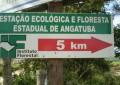 Promotoria do Meio Ambiente quer a revisão da política estadual florestal