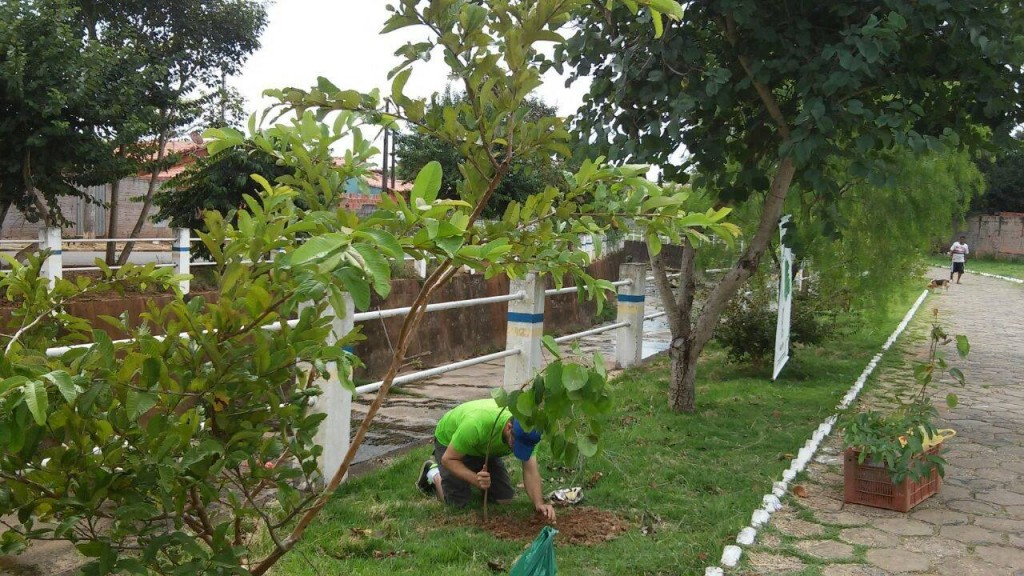 Reconhecendo o empenho da atual administração integrantes da Associação Verde de Angatuba), voluntariamente, colaboraram para melhorar o aspecto da pista de caminhada paralela ao Córrego Catanduva, recolhendo lixo, plantando árvores, etc.