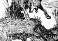 Sobre lobos e virtudes