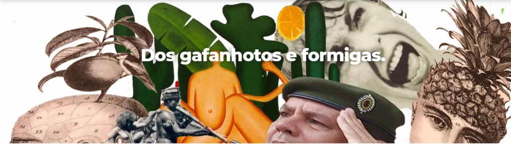 DOS GAFANHOTOS E FORMIGAS